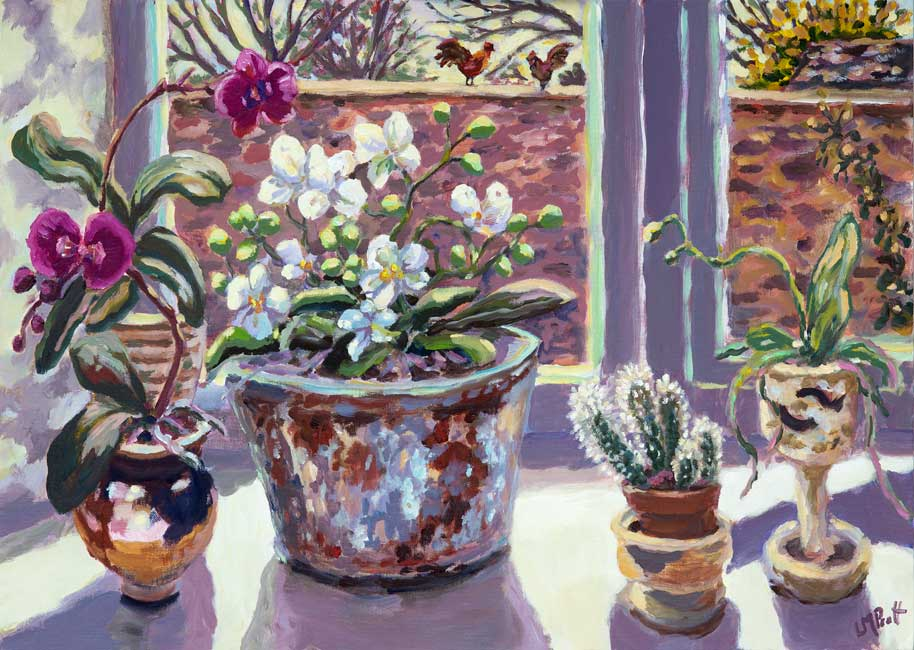 Orchids & Cactuses - Lucy Pratt